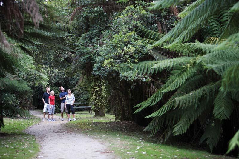 Glade walk